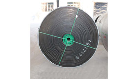 How to Solve the Delamination of Nylon Conveyor Belt in Use?