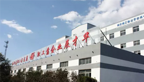 Baoding Huayue Rubber Belts Co., Ltd Won the Bid for the Xiong'an New Area Construction Project